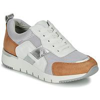 Cipők Női Rövid szárú edzőcipők Caprice BEBENE Fehér / Teve