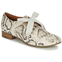 Cipők Női Oxford cipők Mam'Zelle ZORKA Kígyó