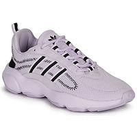Cipők Női Rövid szárú edzőcipők adidas Originals HAIWEE W Mályva