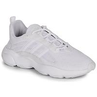 Cipők Férfi Rövid szárú edzőcipők adidas Originals HAIWEE Fehér