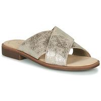 Cipők Női Papucsok Clarks DECLAN IVY Ezüst