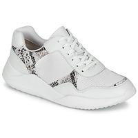 Cipők Női Rövid szárú edzőcipők Clarks SIFT LACE Fehér / Piton
