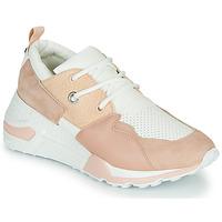Cipők Női Rövid szárú edzőcipők Steve Madden CLIFF Rózsaszín