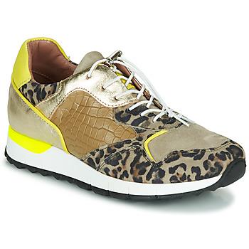 Cipők Női Rövid szárú edzőcipők Mjus CAST Keki / Leopárd