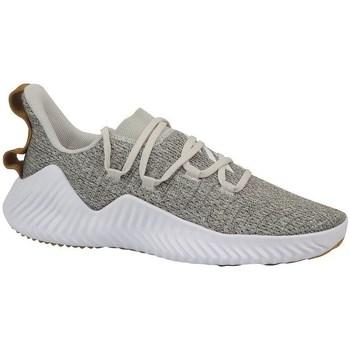Cipők Férfi Fitnesz adidas Originals Alphabounce Trainer