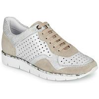 Cipők Női Rövid szárú edzőcipők Regard JARD V4 CROSTA P STONE Fehér / Bézs