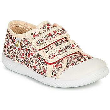 Cipők Lány Rövid szárú edzőcipők Citrouille et Compagnie GLASSIA Ekrü / Sokszínű
