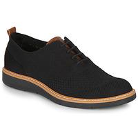 Cipők Férfi Oxford cipők IgI&CO  Fekete