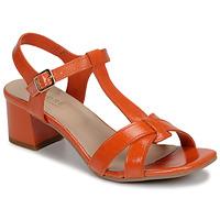Cipők Női Szandálok / Saruk André JOSEPHINE Narancssárga