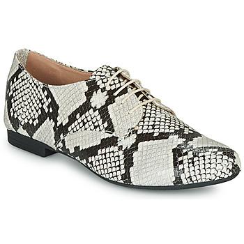 Cipők Női Oxford cipők André COMPLICITY Bézs