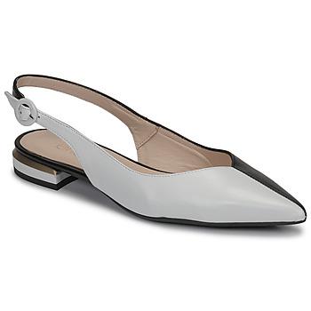 Cipők Női Balerina cipők  Fericelli MANU Fekete  / Et / Fehér