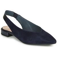 Cipők Női Szandálok / Saruk Betty London MITONI Tengerész