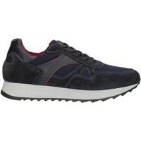 Cipők Férfi Rövid szárú edzőcipők NeroGiardini A901221U Blue