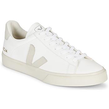 Cipők Rövid szárú edzőcipők Veja CAMPO Fehér / Szürke