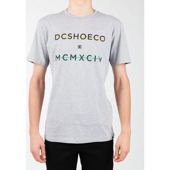 Ruhák Férfi Rövid ujjú pólók DC Shoes T-shirt DC SEDYZT03760-KNFH szary