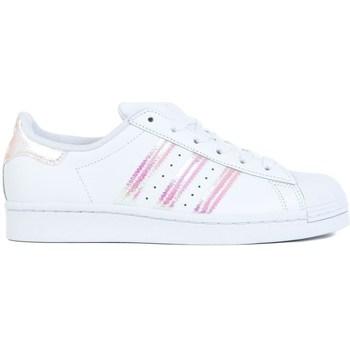 Cipők Gyerek Rövid szárú edzőcipők adidas Originals Superstar J Białe