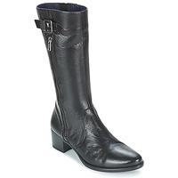 Cipők Női Csizmák Dorking LOLETA Fekete