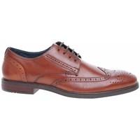 Cipők Férfi Rövid szárú edzőcipők Josef Seibel 42205786370 Brązowe
