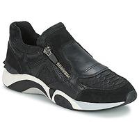 Cipők Női Rövid szárú edzőcipők Ash HOP Fekete