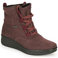 Cipők Női Csizmák Romika Westland CALAIS 08 Bordó