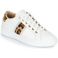 Cipők Női Rövid szárú edzőcipők Geox PONTOISE Fehér / Leopárd