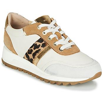 Cipők Női Rövid szárú edzőcipők Geox TABELYA Fehér / Leopárd