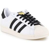 Cipők Férfi Rövid szárú edzőcipők adidas Originals Superstar Laceless Białe,Czarne