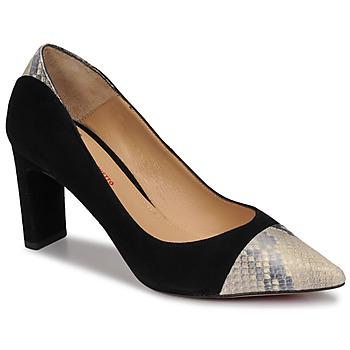 Cipők Női Félcipők Perlato JAMIRI Fekete  / Bézs