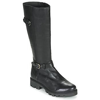 Cipők Női Városi csizmák Pataugas CORA F4F Fekete