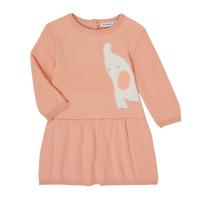 Ruhák Lány Rövid ruhák Noukie's Z050082 Rózsaszín