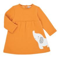 Ruhák Lány Rövid ruhák Noukie's Z050083 Narancssárga