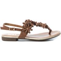 Cipők Női Szandálok / Saruk Xti 48814 CAMEL Marrón