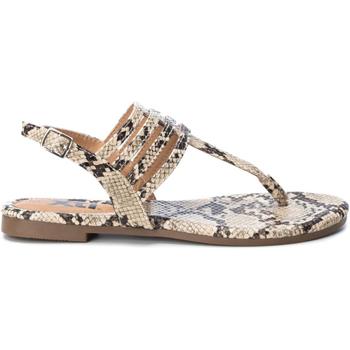 Cipők Női Lábujjközös papucsok Xti 49577 CAMEL Marrón