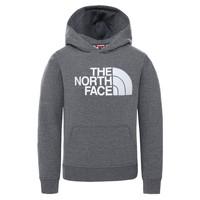 Ruhák Gyerek Pulóverek The North Face DREW PEAK HOODIE Szürke