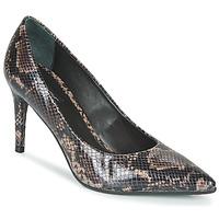 Cipők Női Félcipők Tosca Blu SF2012S224-C60 Piton