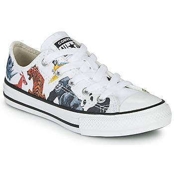 Cipők Gyerek Rövid szárú edzőcipők Converse CHUCK TAYLOR ALL STAR - SCIENCE CLASS Fehér / Sokszínű