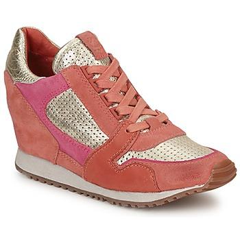 Cipők Női Rövid szárú edzőcipők Ash DEAN BIS Arany / Korall / Rózsaszín