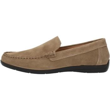 Cipők Férfi Mokkaszínek Imac 500711 Beige