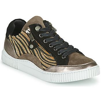 Cipők Női Rövid szárú edzőcipők Regard IDEM V6 CRIS TAUPE Barna