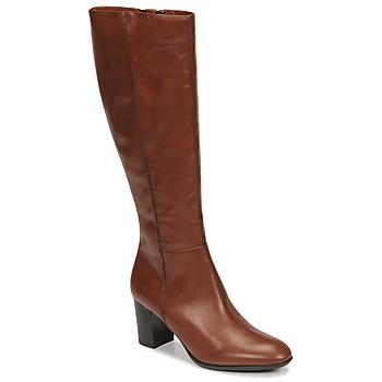 Cipők Női Városi csizmák Fericelli NAVAROIS Teve