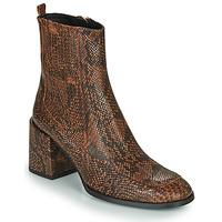 Cipők Női Bokacsizmák Fericelli NAKE Fekete  / Barna