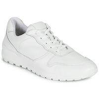 Cipők Férfi Rövid szárú edzőcipők Casual Attitude NOUCHE Fehér