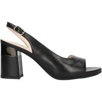 Cipők Női Szandálok / Saruk Nero Giardini E012861DE Black