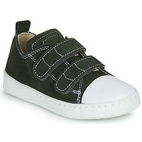 Cipők Fiú Rövid szárú edzőcipők Citrouille et Compagnie NADIR Keki