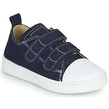 Cipők Fiú Rövid szárú edzőcipők Citrouille et Compagnie NADIR Tengerész