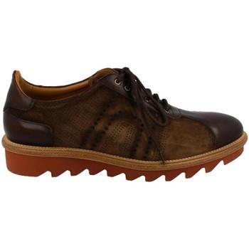 Cipők Férfi Oxford cipők & Bokacipők Calce  Marrón