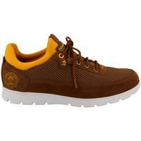 Cipők Férfi Rövid szárú edzőcipők Panama Jack  Beige