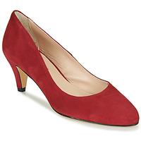 Cipők Női Félcipők Betty London NESLIE Piros / Sötét