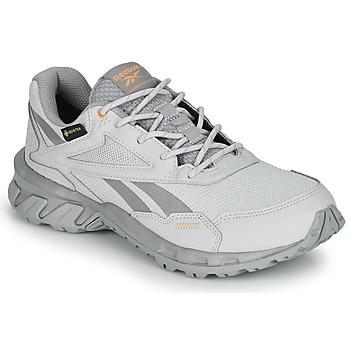 Cipők Rövid szárú edzőcipők Reebok Classic RIDGERIDER 5 GTX Szürke