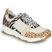 Cipők Női Rövid szárú edzőcipők Gioseppo CREAZZO Leopárd